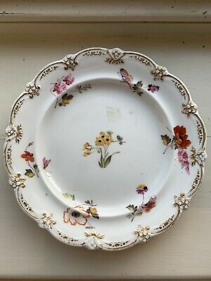 Early 19th Century Plate With Insects & Flowers Rockingham? Ridgeway? C1830 • 18£