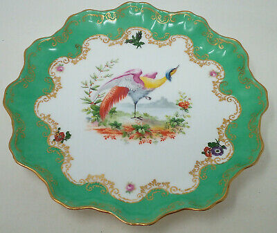Antique Royal Doulton Bird Of Paradise Plate Early 20th Century • 12£