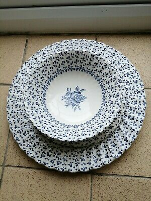 Vintage Rose Bouquet By Royal Victoria Ironstone Ware. Plate, Side And Bowl. • 13.50£
