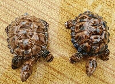2 X Used Wade Brown Tortoises/ Turtles - 21 • 10£