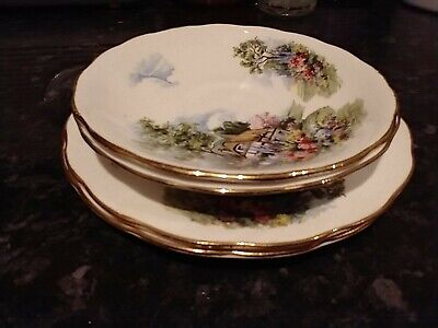 Royal Vale Country Cottage Saucer & Side Plate X2 • 5£