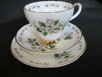 Adderley,simplicity ,trio, Cup, Saucer , Side Plate, Bone China ,great Condition • 7.50£