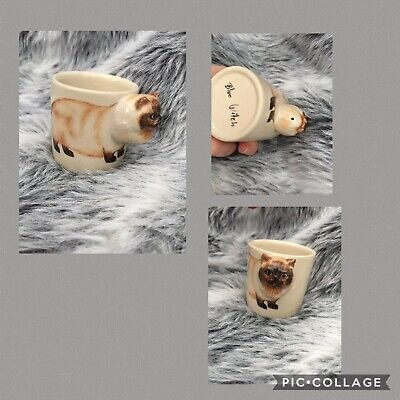Blue Witch Persian Cat Small Cup Expresso • 12.99£