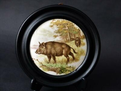 Antique & Collectables Mounted Pot Lid,Rare Wild Boar Decor, Ebonised Wood Frame • 49.99£