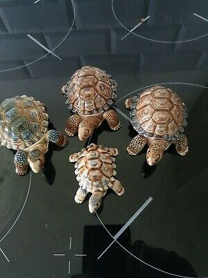 Selection Of Wade Tortoises  • 3£