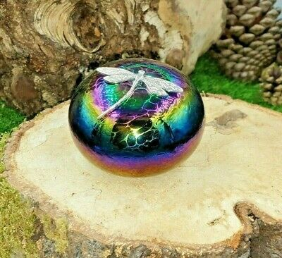 Neo Art Glass Rainbow Iridescent Pebble Paperweight Silver Dragonfly By K.Heaton • 0.99£