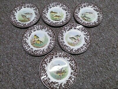 Spode Fish Plates (6) Roach, Rudd, Tench, Trout, Perch, Salmon - Excellent Cond • 0.99£