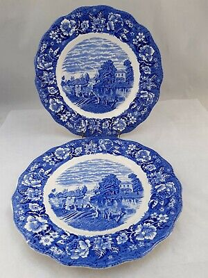 Pair Of Antique Blue And White Palissy Plates.Shepperton Middlesex. • 12£