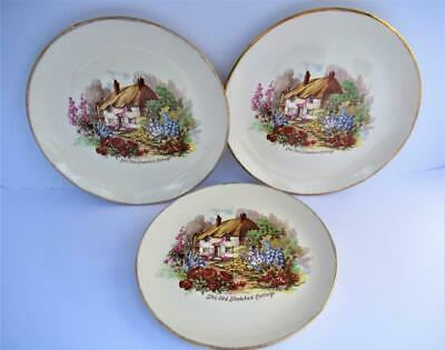 3 Vintage Royal Tudor Ware  Plates The Old Thatched Cottage Barker Bros 30s 40s • 5£