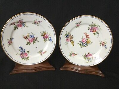 A Pair Of Antique Sevres Style Plates. • 34.99£