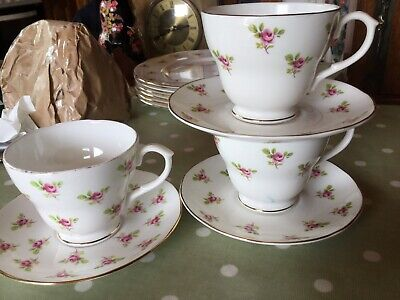 Salisbury ,Ditsy Rose~Pink Roses China~Tea Cup And Saucer X2  &1x Duchess • 9.99£