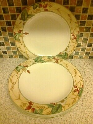 Royal Doulton Expressions Edenfield Design 5 X Dinner Plates • 14.99£