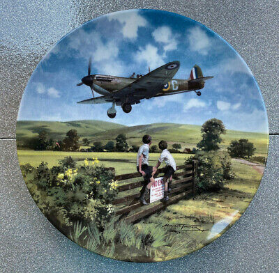 Genuine Royal Doulton Limited Edition 'Heroes Of The Sky' Aircraft Themed Plates • 19.99£