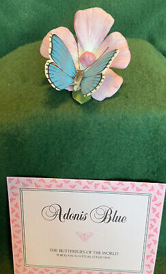 Franklin Mint Butterflies Of The World  - Adonis Blue • 5.50£