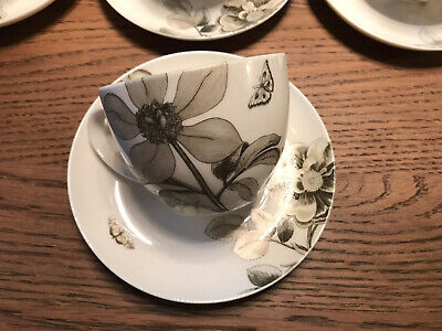 """Queens Sanderson """"Etchings & Roses"""" 9 Cups & Saucers • 25£"""