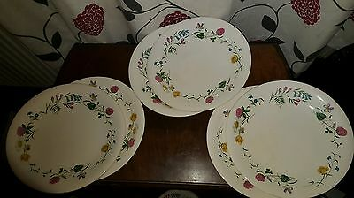 Royal Staffordshire Wild Beauty Dinner Plate X 6  (pt8) • 30.95£