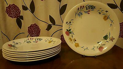Royal Staffordshire Wild Beauty Salad Plates X 7  (pt8) • 25.95£