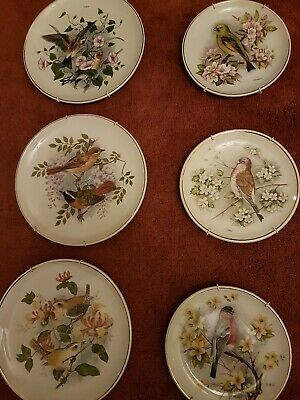6 X Prinknash Pottery Birds Of The Hedgerow Plates • 30£