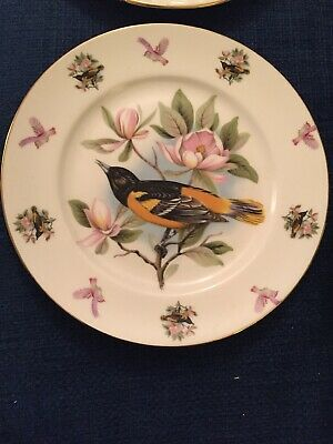 Decorative Bird Plates Royal Sutherland Bone China • 2.50£
