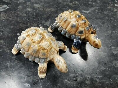 2 Vintage Wade Tortoises Different Years And Colourways • 19£