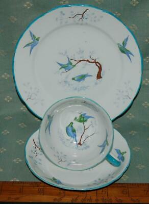 Antique China Trio Cup Saucer Plate Grovesnor China Longton Exotic Birds C1930s • 10£