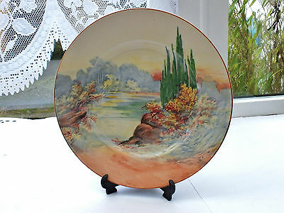"Royal Doulton ""woodley Dale"" Pattern Cabinet Plate  • 9.99£"
