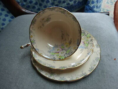 PARAGON Cineraria Peach Trio Cup Saucer & Side Plate Queen Mary Royal Appointme • 15.50£