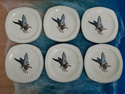 Wild Geese Midwinter Staffordshire Vintage Set Of 6 Side Plates By Peter Scott.  • 22.99£