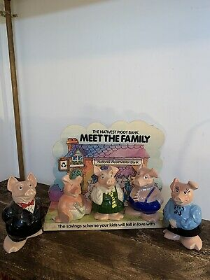 Orginal Natwest Pigs Family With Promotional Display Card • 150£