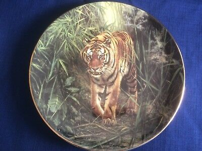 Royal Doulton The Wild Tiger Collection  Lord Of The Jungle  Tiger Plate • 8.50£