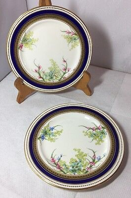 Pretty Antique Victorian Pair Of Hand Painted Plates Unmarked Good Quality Old • 24.99£
