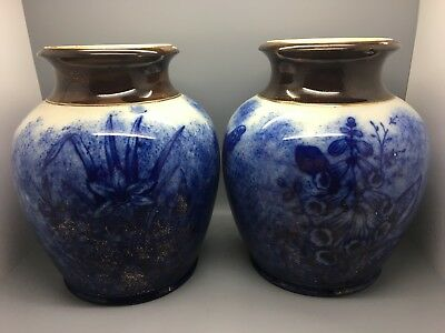 Pair Of Large Victorian Pots / Jars With Butterflies & Flora In Flow Blue  • 39.95£