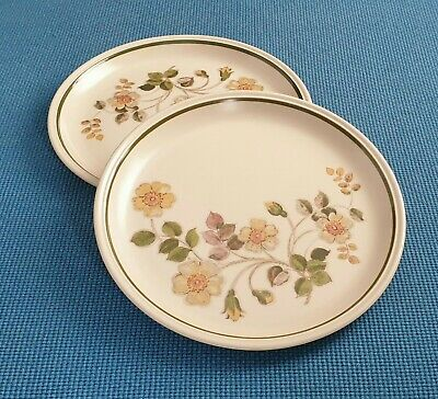 Marks & Spencer  *autumn Leaves* Two 10.4  Dinner Plates  #excellent Used# • 12.50£