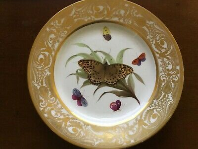 Derby Hand Painted Butterfly Dessert Plate. Mid 19th Century. Gilded Frieze • 50£
