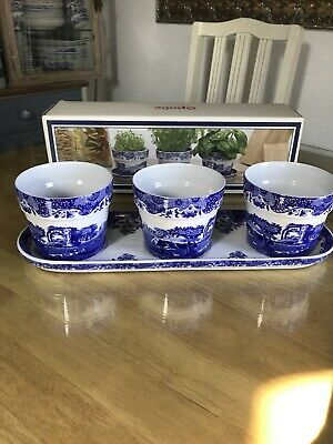 Spode Blue Italian Rare 3 Herb Planter And Tray With Box • 59£