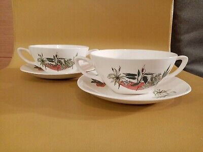 Rare Vintage Midwinter Plant Life Soup Bowls And Saucers. Terence Conran • 0.99£