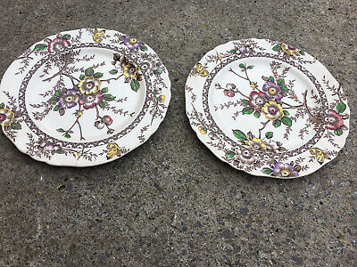 Alfred Meakin Plates • 4£
