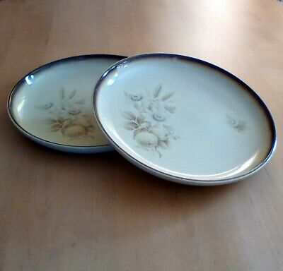Denby *memories*   Two 10.1  Dinner  Plates ##very Good Used Condition# • 14£