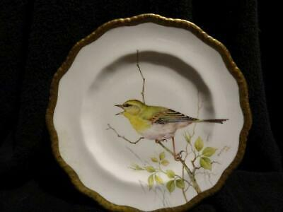 Dunheved China Plate  Wagtail  By Ex Royal Worcester Artist Derek Wilson • 19.95£