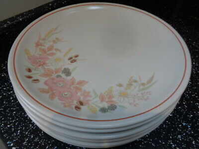 Boots Hedge Rose Large Dinner Plates X 6 • 36£