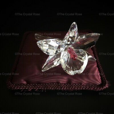 RARE Retired Swarovski Crystal Orchid Pink Light Centre 200287 Boxed Mint Pillow • 50£