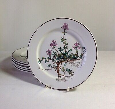 Six Villeroy & Boch Botanica Plates - Thymus Pulegoioides With Roots • 30£