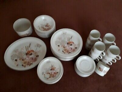 Poole Pottery Summer Glory Dinner Set • 15£