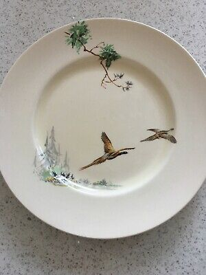 Royal Doulton The Coppice Dinner Plate • 0.99£
