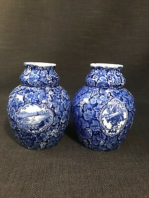 Ludwig Wessel Pair Of Blue & White Continental Porcelain Vases 1875-1900 • 22.99£