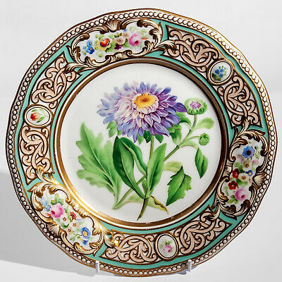Antique English China Hand Painted Cabinet Plate China Aster Diamond Mark 1855 • 74.99£