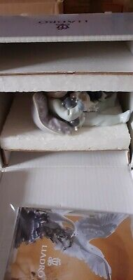 Lladro Lovely Figurine  Sweet Dreams 1535  Boy With Dog And Puppies Boxed • 38£