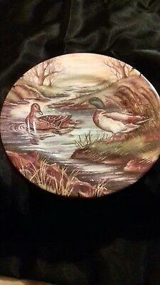 Fenton China Company English Bone China Plate  # • 9.99£