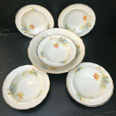 Vintage Swinnertons Luxor Vellum China Serving Bowl And 5 Matching Bowls. Floral • 22£
