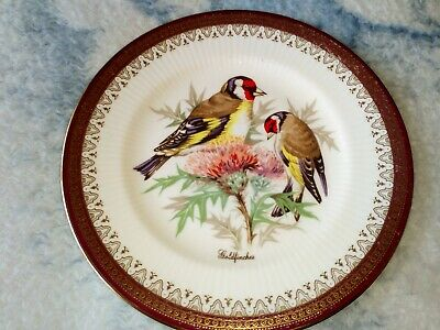 PARAGON HOLYROOD SIDE PLATE RARE BRITISH BIRDS GOLDFINCHES CENTRE 16cm Dia Vgc • 16.99£